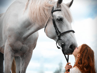 Study Shows Effectiveness of Equine-Facilitated Psychotherapy on Post-Traumatic Stress Symptoms in Y