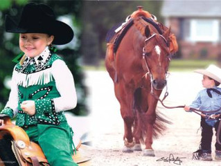 Beginning With Horses: A Guide For New Horse Owners
