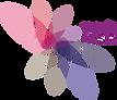 visavis_mit_ClamVector_Logo2.png
