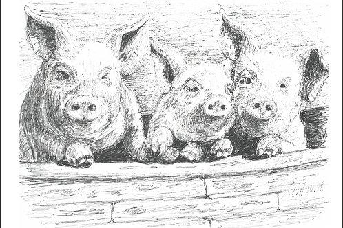 """Gutschein Motiv """"Glücksschweine"""""""
