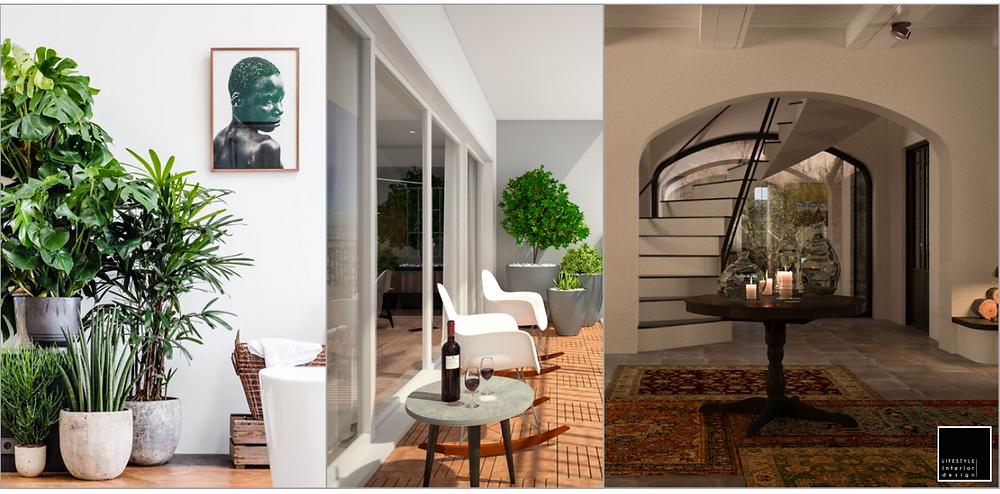 Indoor Garden - Interior design - Vietnam Ho Chi Minh