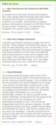 All In Kennels Reviews, Miniatur Bull Terrier Reviews