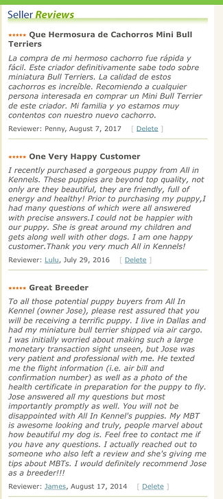 All In Kennels Reviews, Miniatur Bull Terrier Reviews