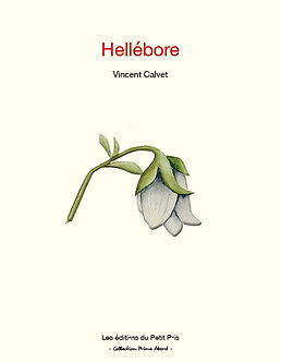 Hellébore