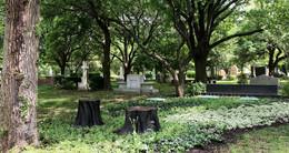 Memorial Garden Seats, Installed