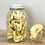 Thumbnail: Dried Apple Rings