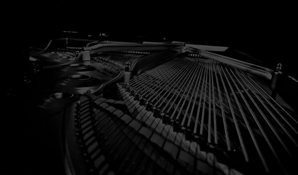 Piano Strings 2520 Dark.jpg