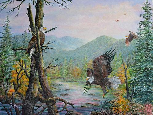 PRTGLP762-Three Eagles at Great Smokey Mountains