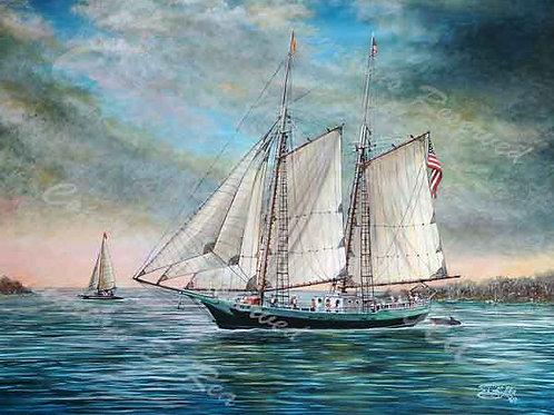 PRTGLP414-Sailing the Keys