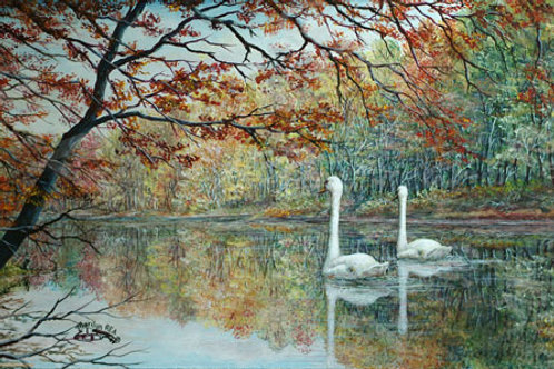 PRTGLP-392-Autumn Reflections