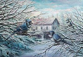 PNT380-Bluejays&WinterBarn---8x10--WATER