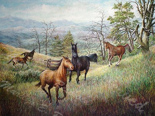 PRTGLP425-Running Horses