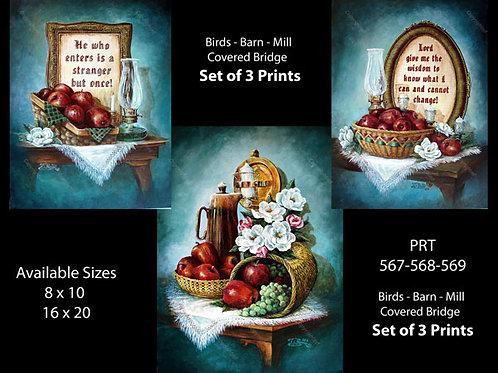 PRTOE614-615-616  Apple Still Lifes