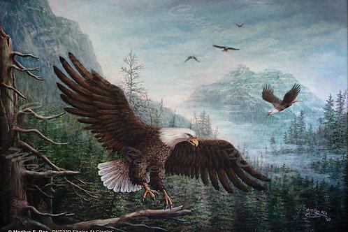PRTGLP339-Eagles At Glacier