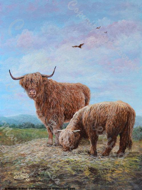 PRTGLP469-Scottish Highland Cows