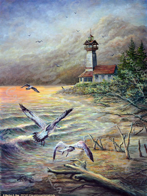 PRTGLP497-Erie Marina & Gulls