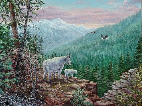 PRTGLP-352-Kootney Goats