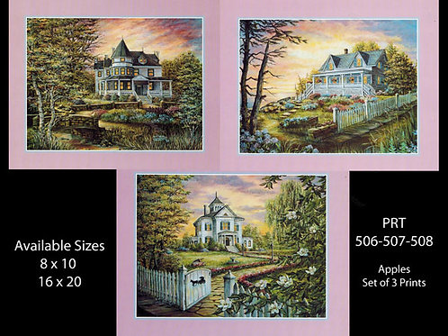 PRTOE528-529-530  Victorian Homes