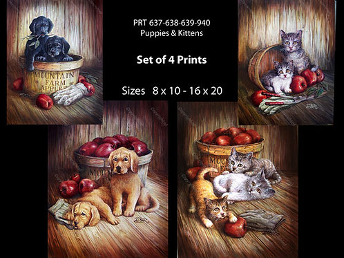 PRTOE637-638-639-340  Puppies and Kittens
