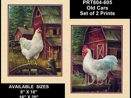 PRTOE604-605  White Chickens