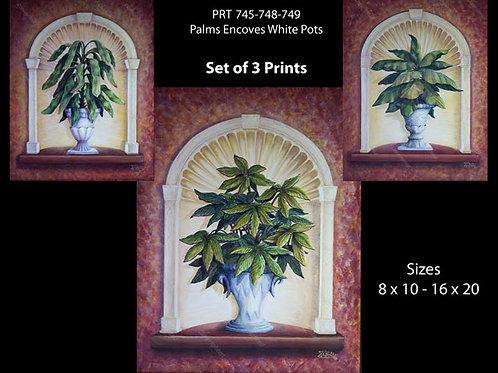 PRTOE745-748-749  Palms , Vases in Encoves