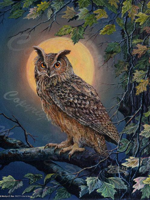 PRTGLP771-Owl & Moon