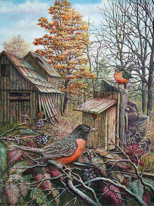 PNT382-Robins & Barn