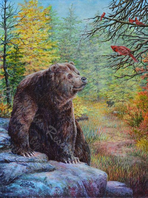 PRTGLP468-Bear on Rocks & Cardinal