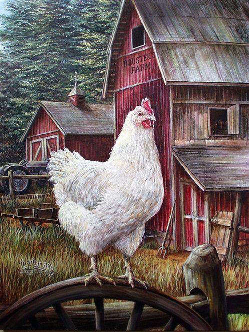PRTOE604-Chicken Hen
