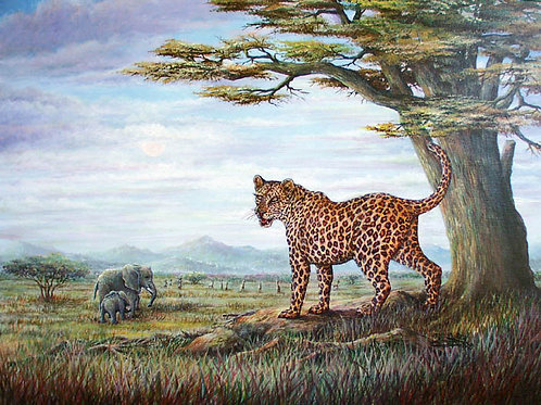 PRTOE626-Leopards