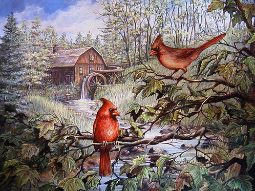 PRTOE569-Cardinals and Old Mill
