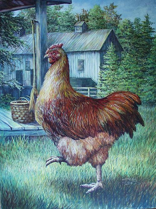 PRTOE636-Red Hen