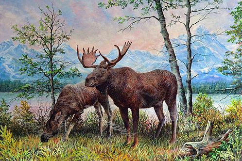 PRTGLP482-Teton Moose