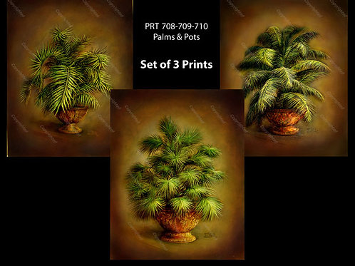 PRTOE708-709-710  Palms & Gold Vases
