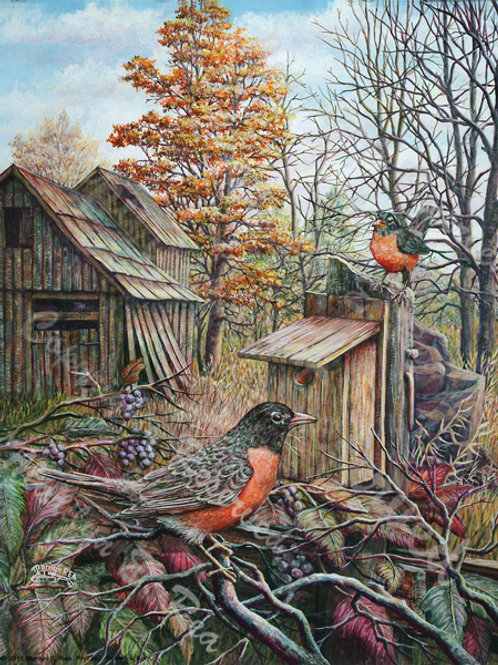 PRTGLP-382-Robins & Barn