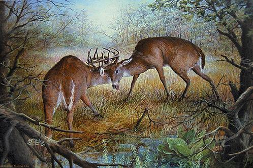 PRTGLP-256-Fighting Bucks