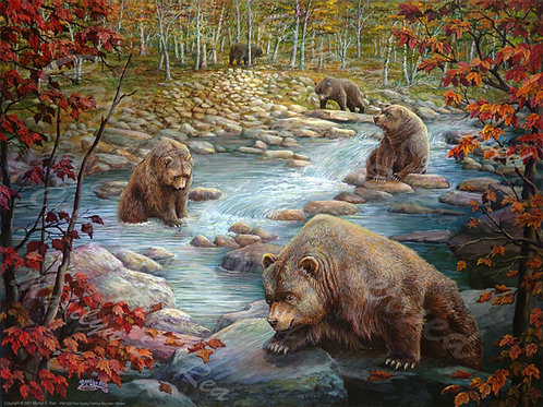 PRTGLP338-Five Grizzlys fishing Mt. Stream