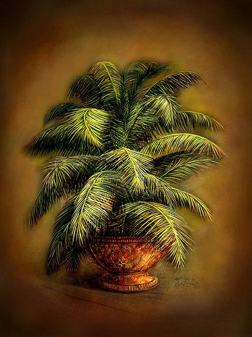 PRTOE709 Dark Palms in Pot- Lacy