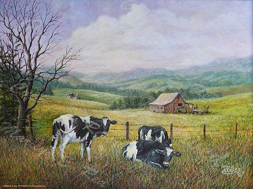 PRTGLP498-BW Cows & Appalachian Mts.