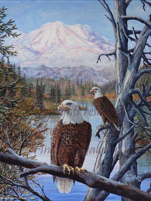 PRTGLP433-Eagles At Rainer