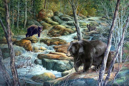PRTGLP346-Black bears fishing Mt. Stream