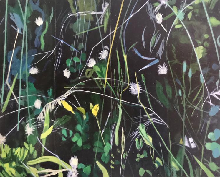 """""""Little blue grasses"""""""