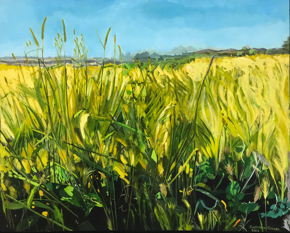 """Yellow Grasses"""