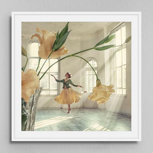 Poster Dance