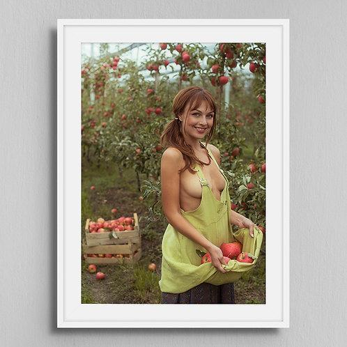 Poster Apple garden