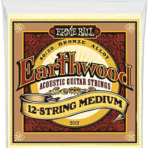 Ernie Ball Earthwood Acoustic 12-String