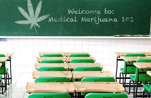 59f9b10090b40_cannabiseducation.jpg.e03a1204448534598336b0ab68bafab7.jpg
