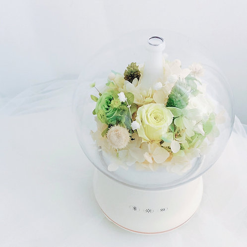 Aroma Diffuser 保鮮花夜燈香薰加濕機