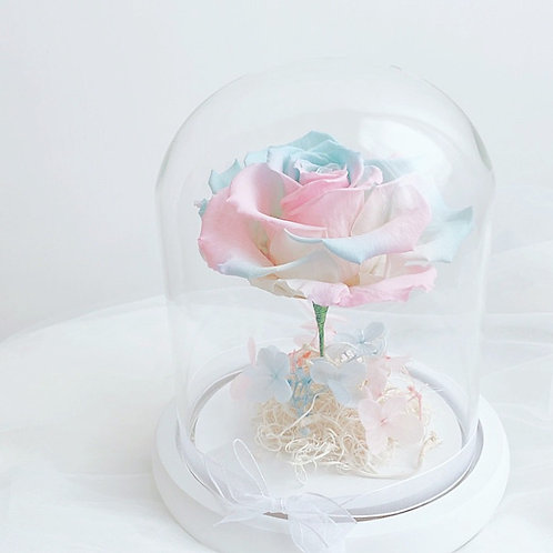 Flower in Glass 保鮮花玻璃瓶