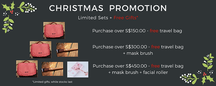 Christmas Promotion.png